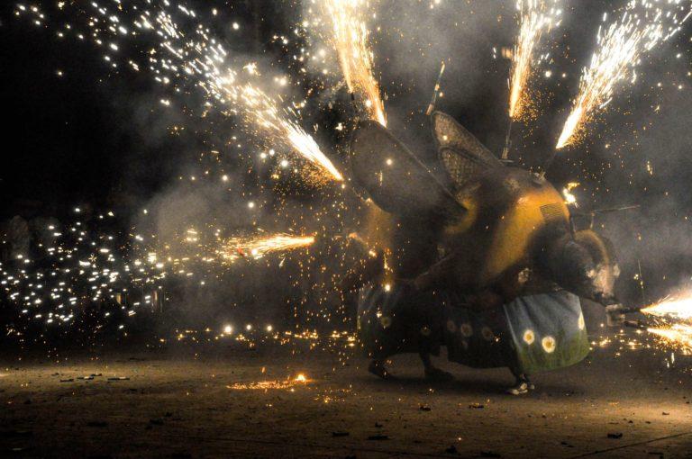 Imágenes de Borinot de foc